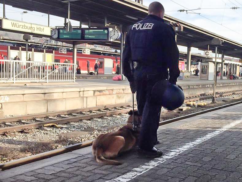 Ein Bundespolizist mit Diensthund am Würzburger Bahnhof - Foto: Pascal Höfig