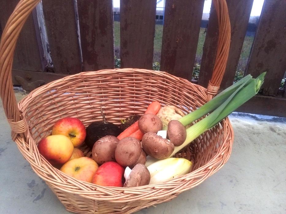 """Ja, auch Obst und Gemüse kann man heutzutage online bestellen. Beispielsweise den Frischekorb vom Bio-Hof """"Grashüpfer"""" in Erlenbach. Foto: Jessica Wille"""