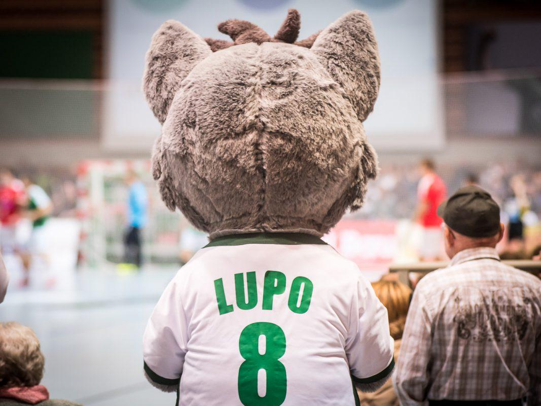 Lupo, das Maskottchen der DJK Rimpar Wölfe. Foto: Pascal Höfig