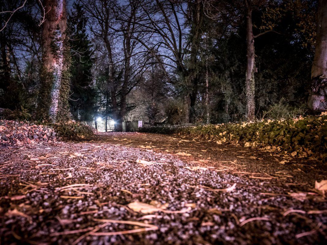 Der Ringpark bei Nacht Foto: Pascal Höfig