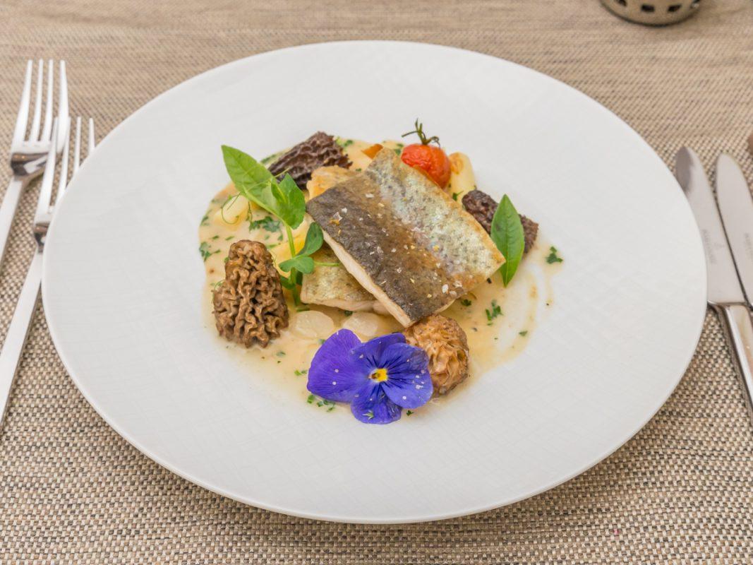 Leckeres Fischgericht. Foto: Pascal Höfig