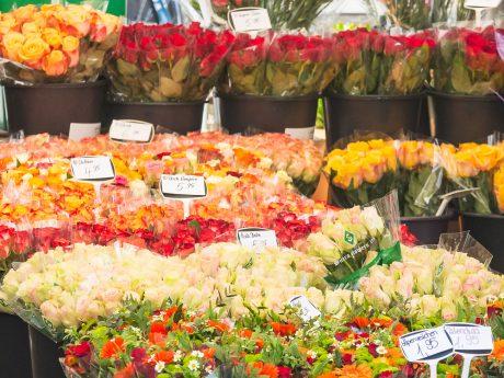 Blumen über Blumen. Symbolfoto: Pascal Höfig