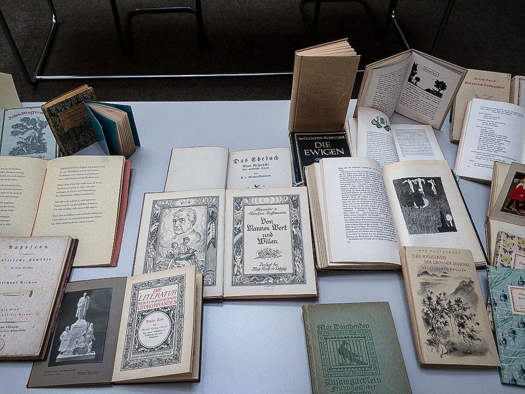 Eva Pleticha-Geuder zeigte Bücher aus einer aktuellen Schenkung - Foto: Luisa Kleinschrodt