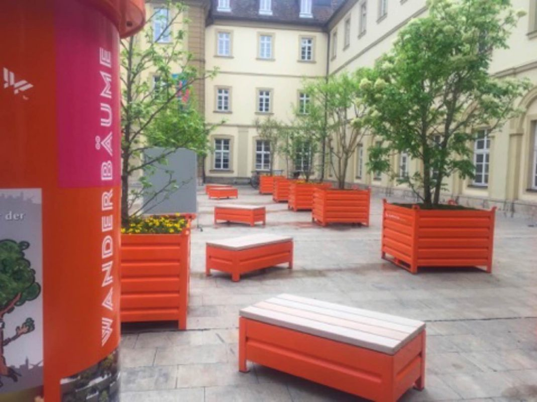 Neue Schattenspender- die Würzburger Wanderbäume. Foto: Pascal Höfig