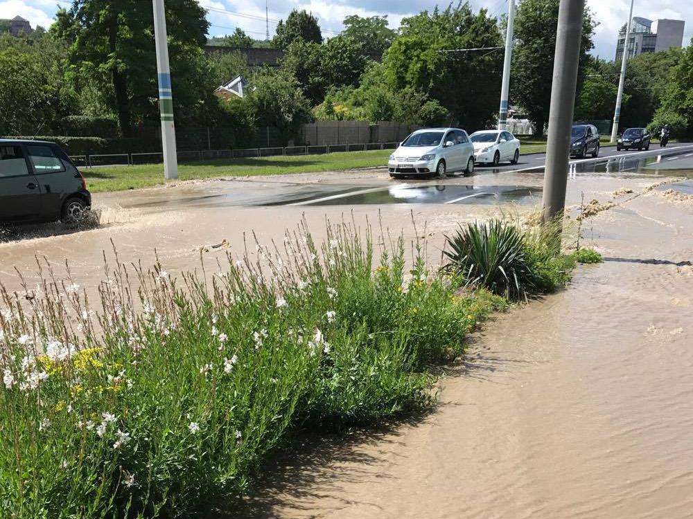 Wasserrohrbruch in der Luitpoldstraße. Foto: Alexandra Fröhlich