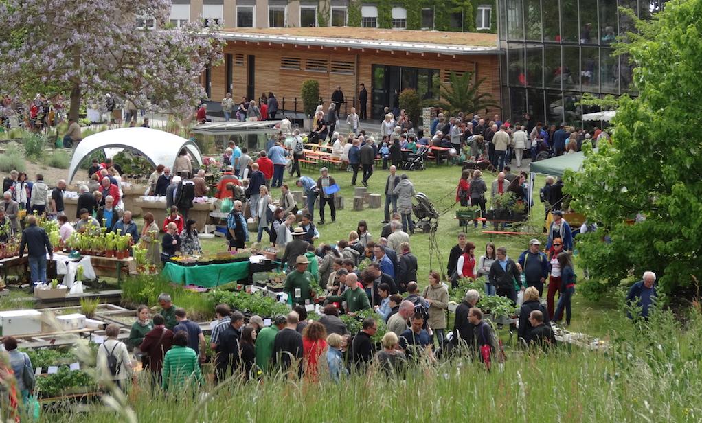 Alpine Stauden, Clematis-Spezialitäten, Taglilien, Kakteen und viele andere Pflanzenarten – Foto: Botanischer Garten