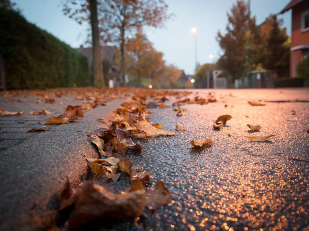 Herbstlaub. Symbolfoto: Pascal Höfig