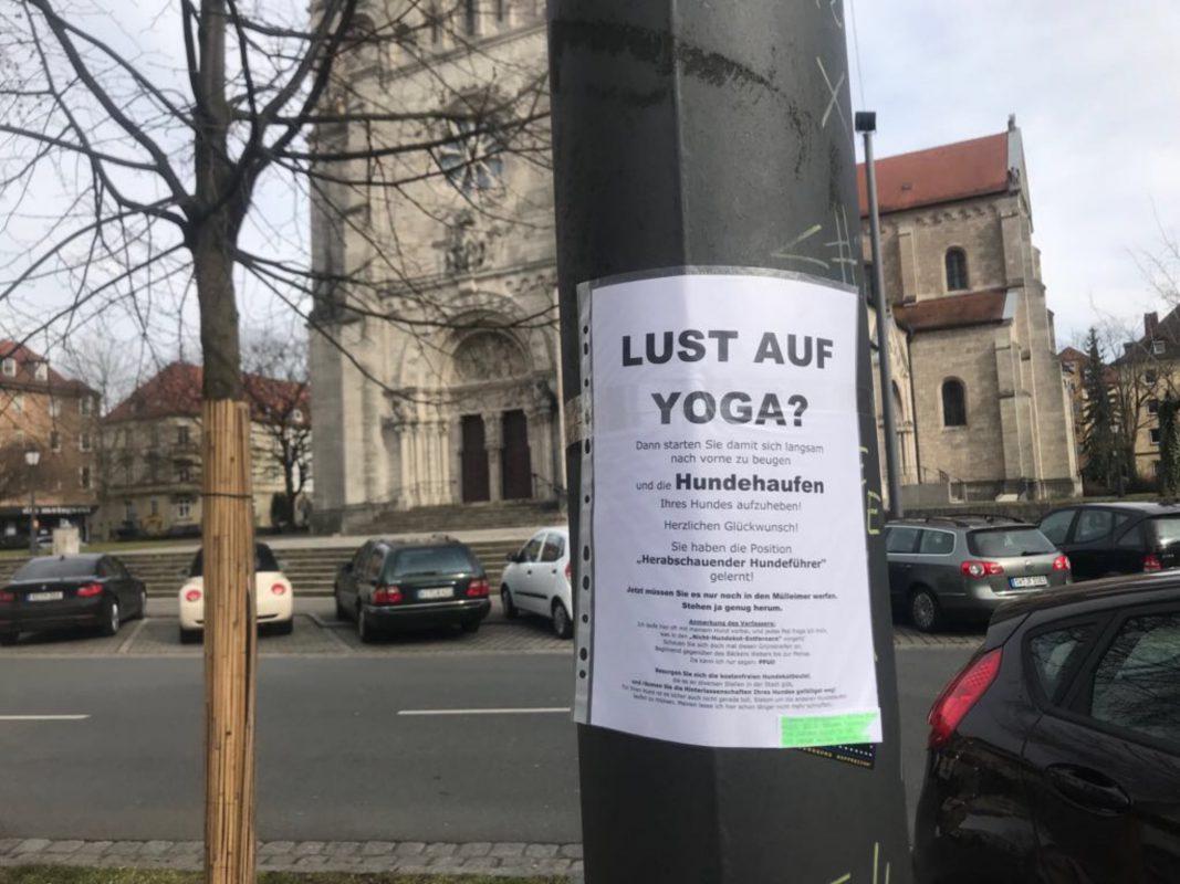 Neue Sportart Hundehaufen-Yoga? Foto: Lena Müller