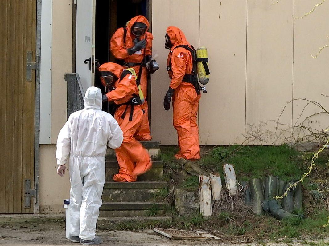 Einige Schweinekadaver wurden zur pathologischen Untersuchung nach Erlangen verbracht. Foto: Sat.1 Bayern