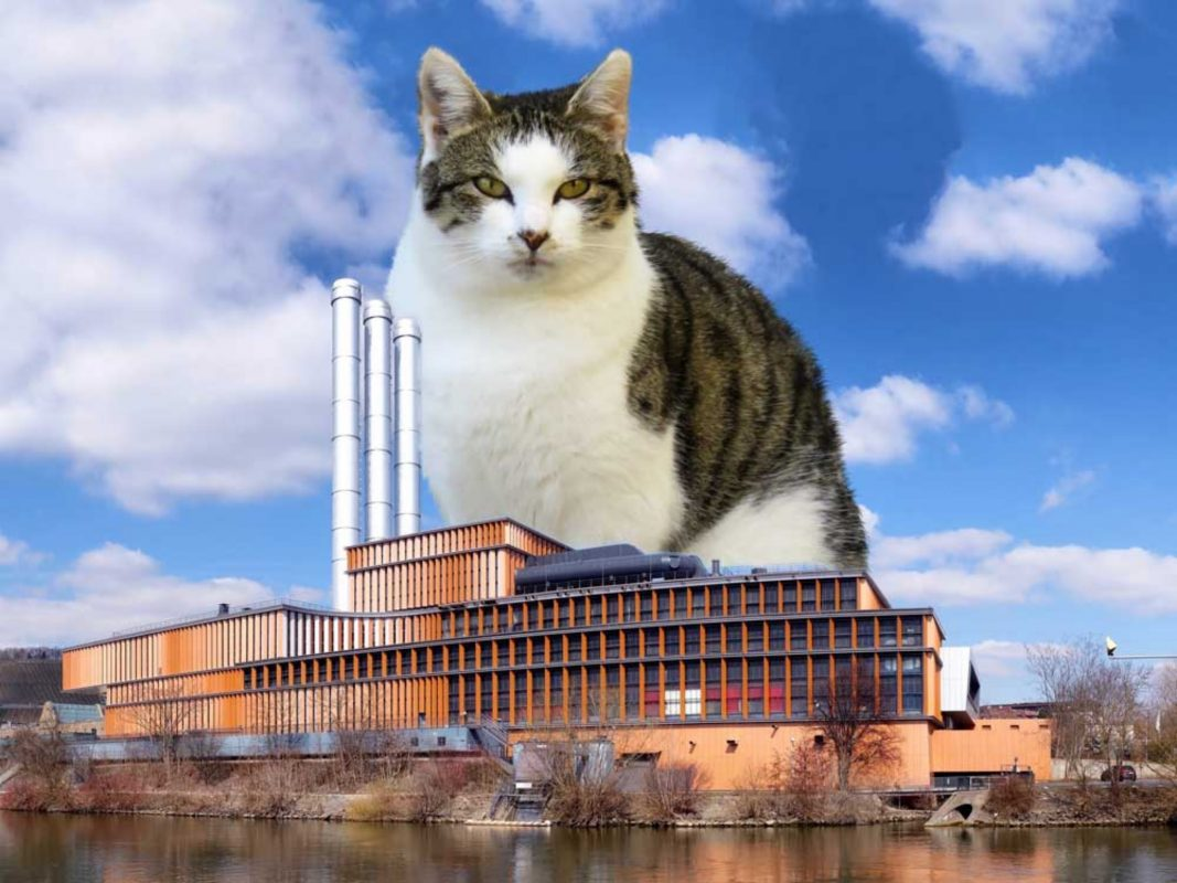 Catzilla - Katze in Übergröße. Fotomontage: Dominik Ziegler