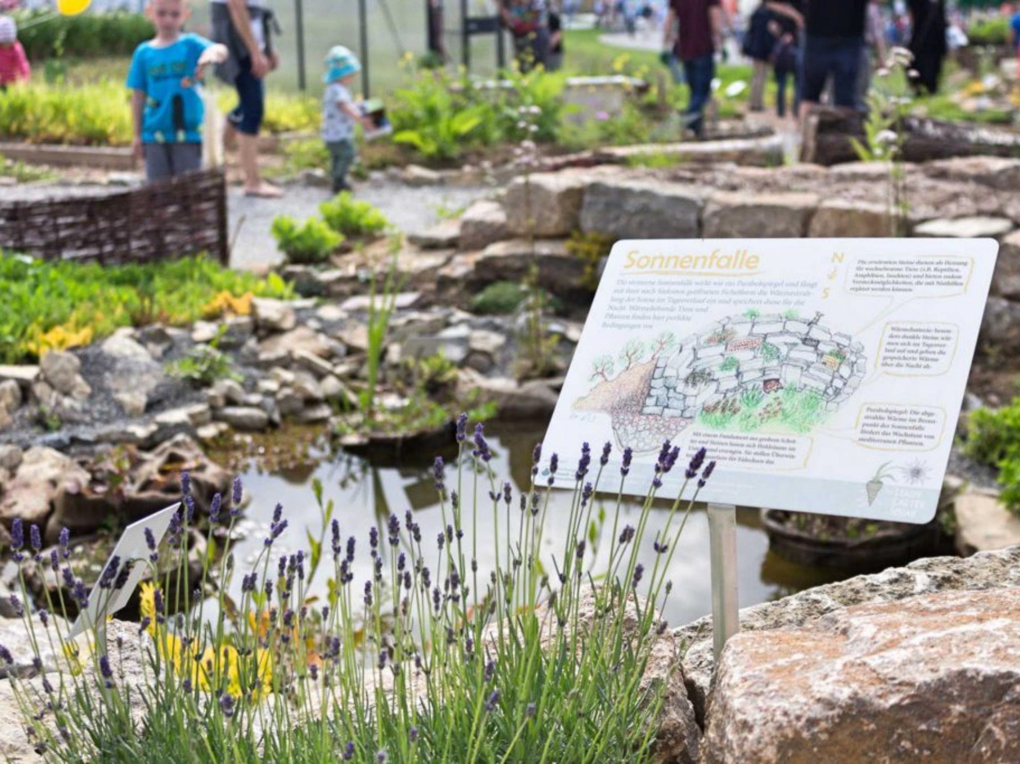 Teil des Gartenprojekts der Stadtgärtner. Foto: Silvia Appel