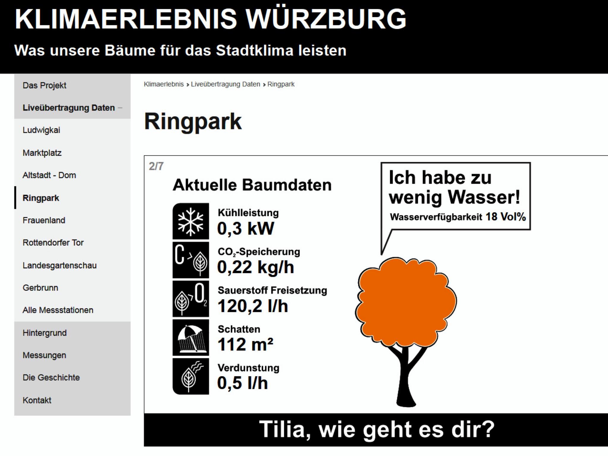 Messwerte für einen Baum im Würzburger Ringpark vom Vormittag des 2. August 2018. Foto: Klimaerlebnis Würzburg
