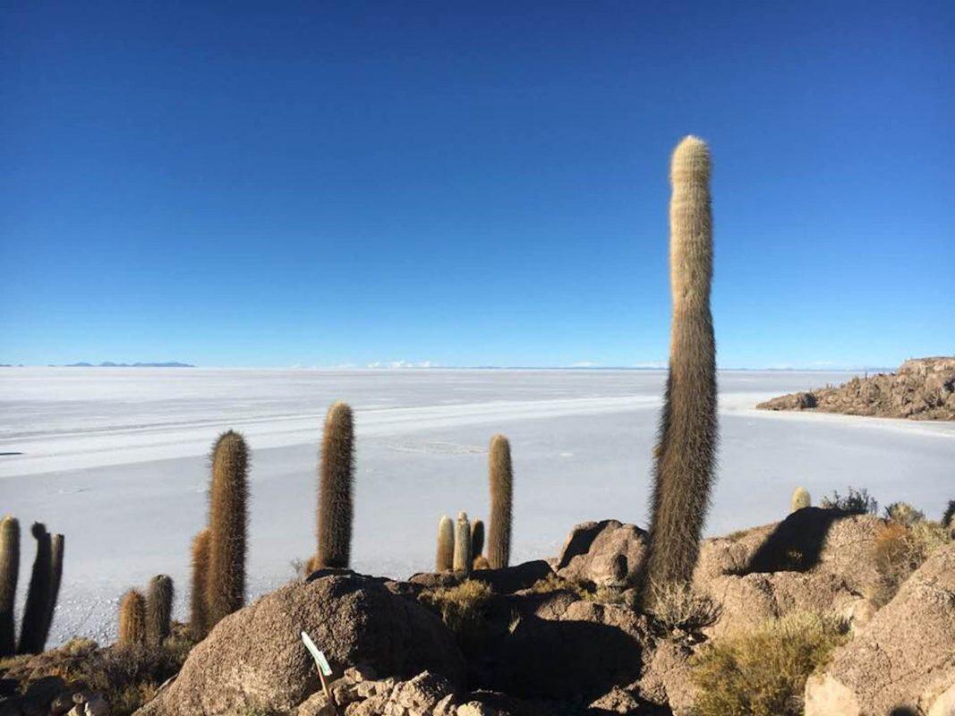 Die Weiten Boliviens. Foto: privat