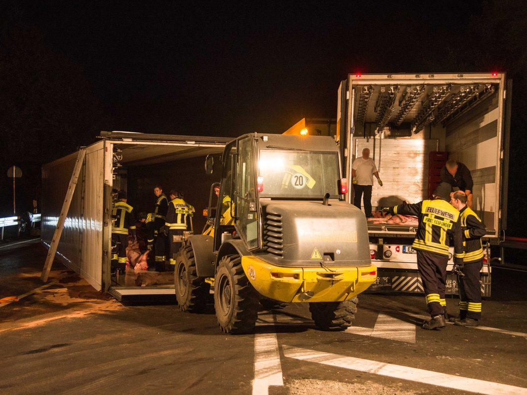 Die Ladung, 290 gekühlte Schweinehälften, musste in einen anderen hinzugerufenen Laster umgeladen werden. Foto: Pascal Höfig