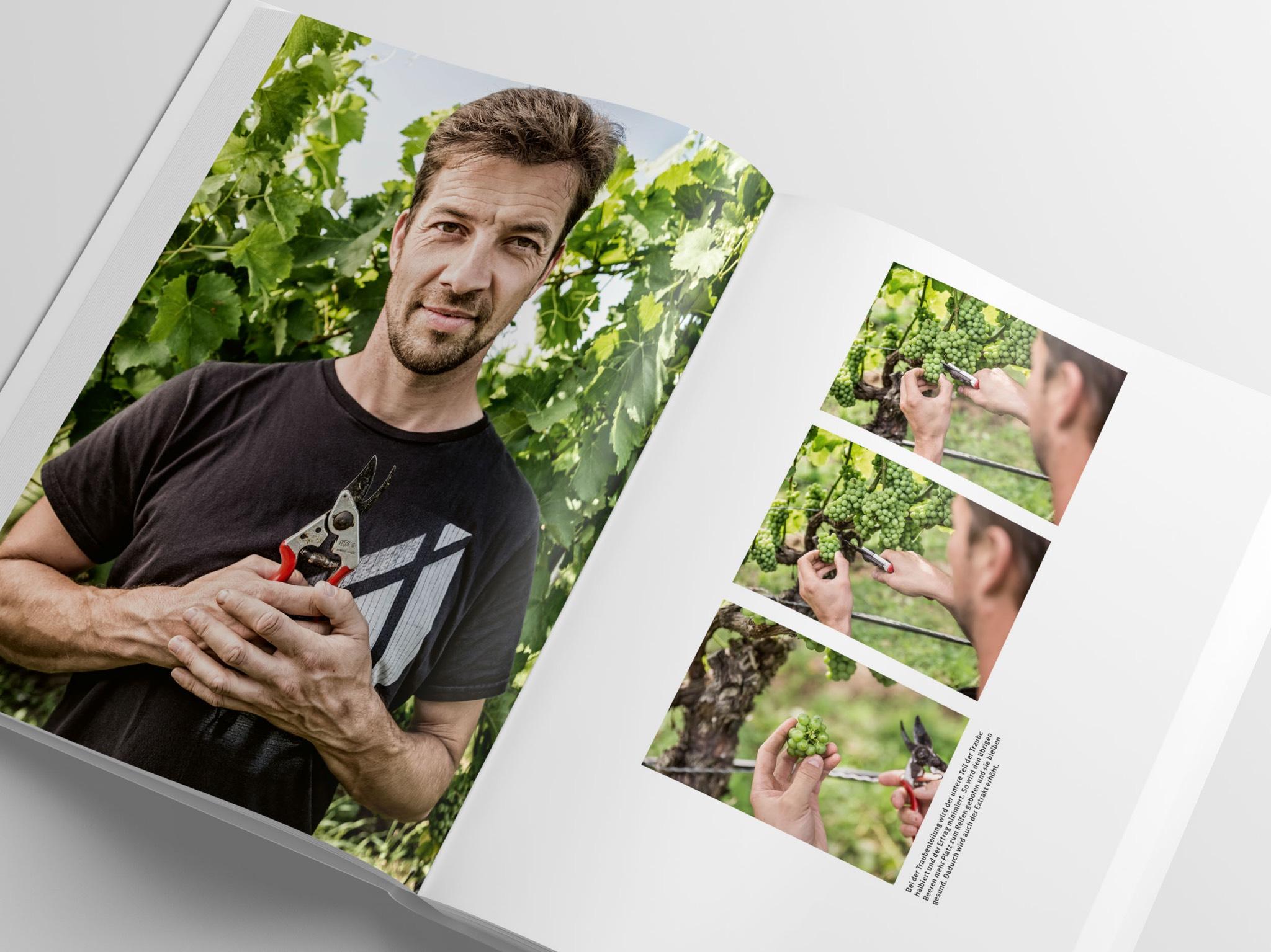 Ein Blick ins Buch. Bild: Stefan Bausewein/Julia Schuller