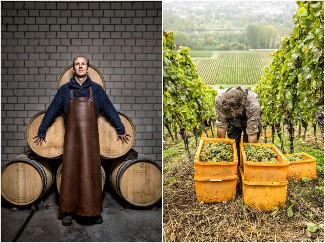 Links bei der Kellerarbeit und rechts bei der Weinlese. Bild: Stefan Bausewein/Julia Schuller