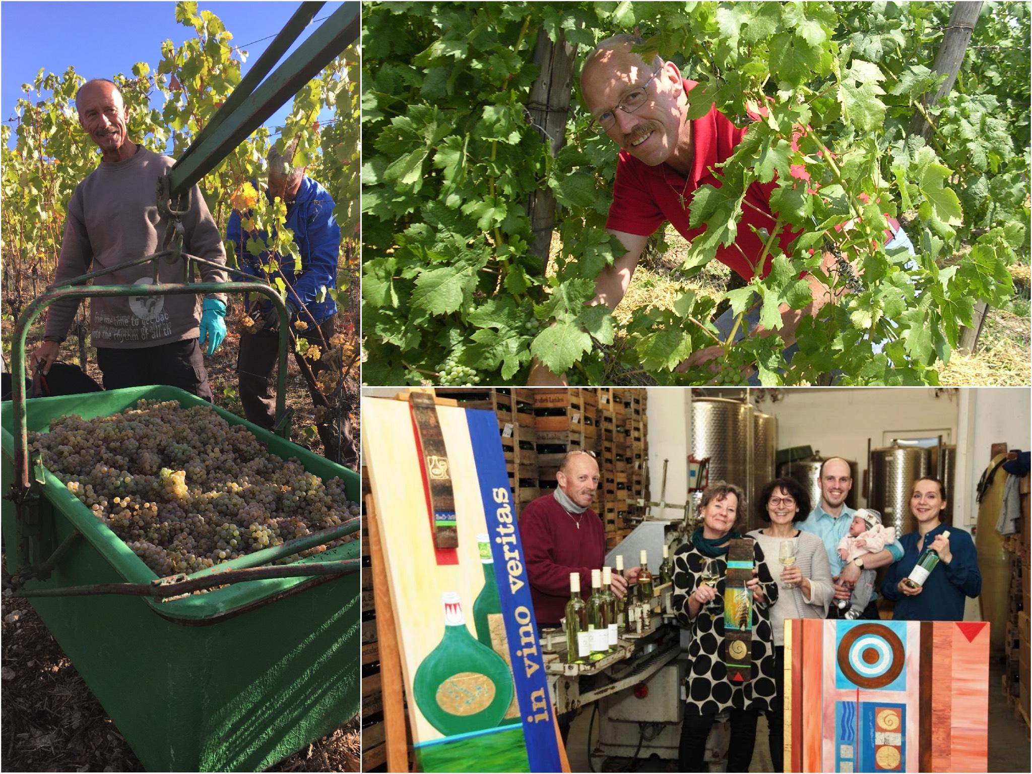 Die Winzer im Weinberg und auf einer Austellung ihres fertigen Weines. Foto: Sigrid und Günther Schubert
