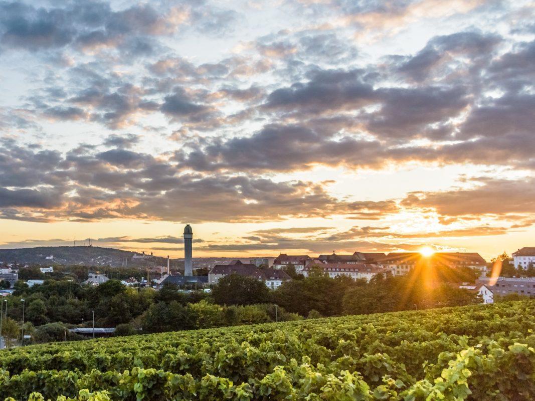 Herbstliches Würzburg. Foto: Pascal Höfig
