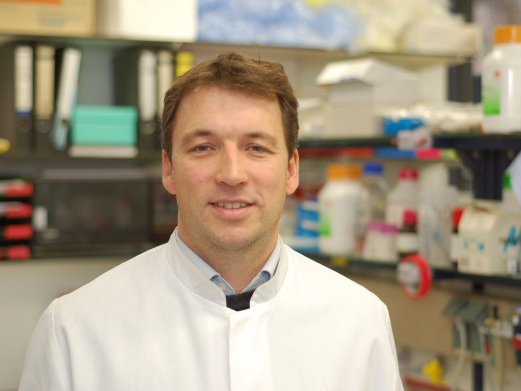 Der Würzburger Virologe forscht schon seit mehr als 20 Jahren am HI-Virus