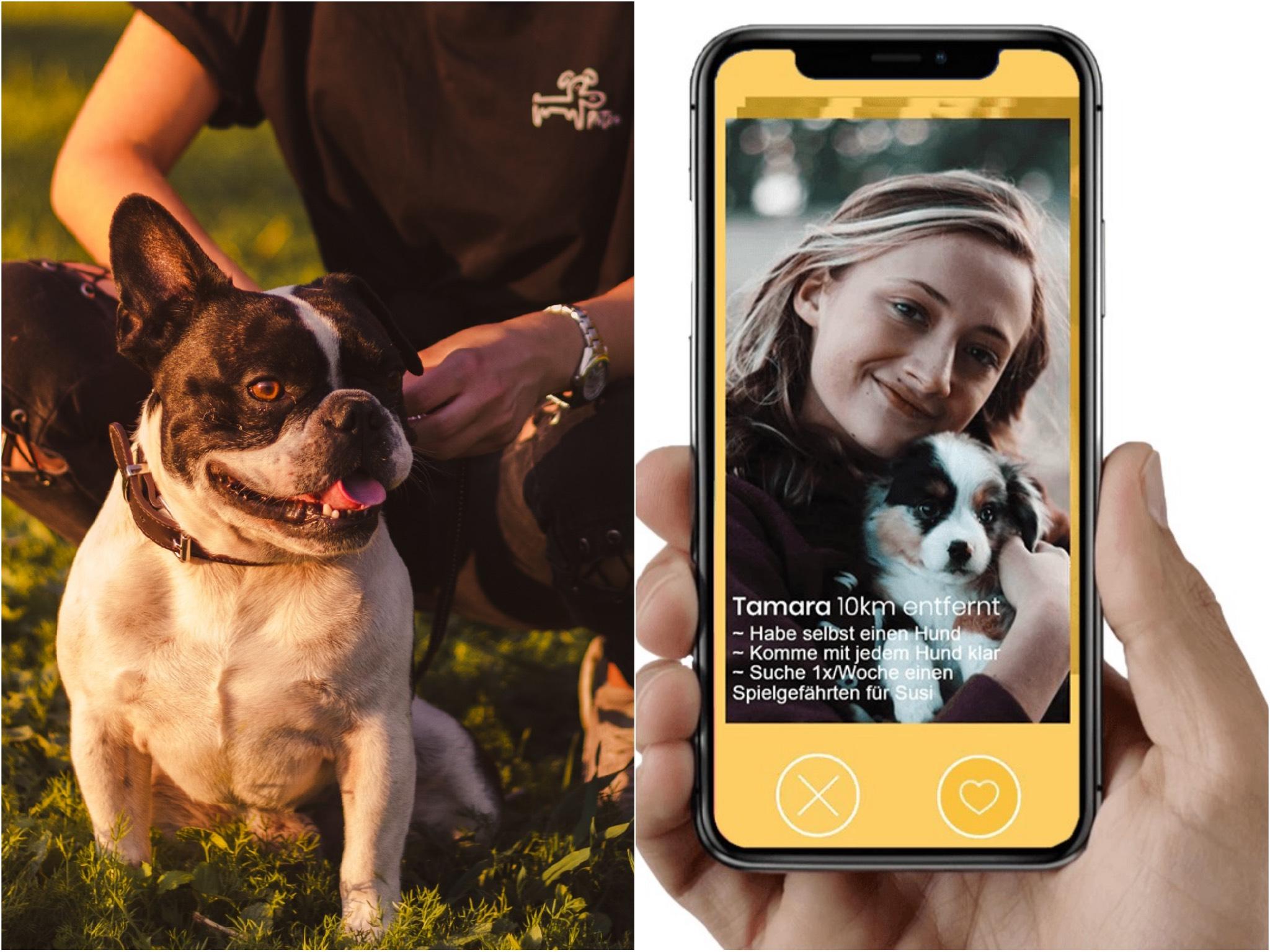 Die Hunde-App Patzo für alle Hundeliebhaber. Fotos: Felix Kox/Patzo