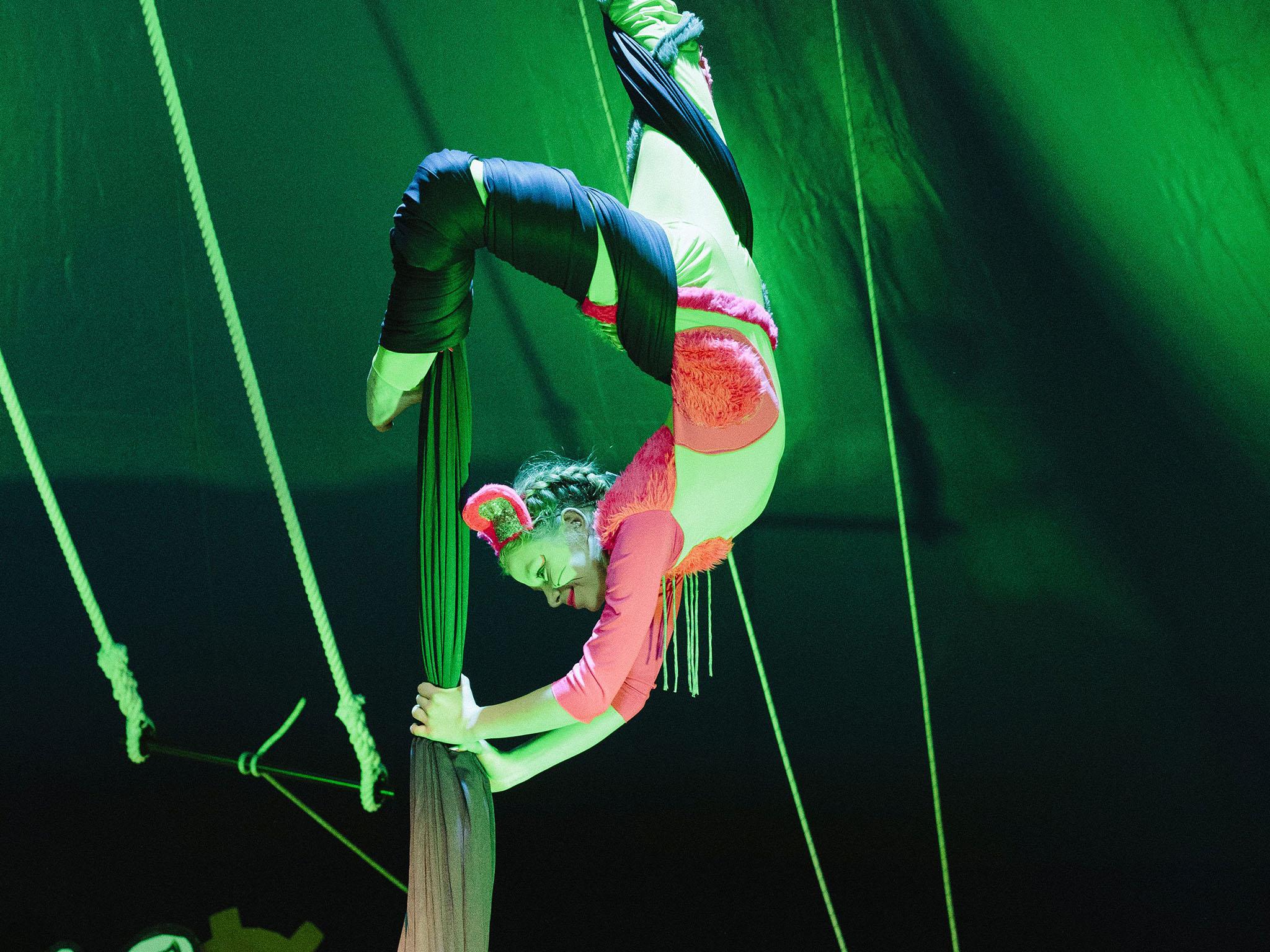 Die Jugendlichen des Circus Knirps stehen den Profiakrobaten in nichts nach. Foto: Büro 71a.