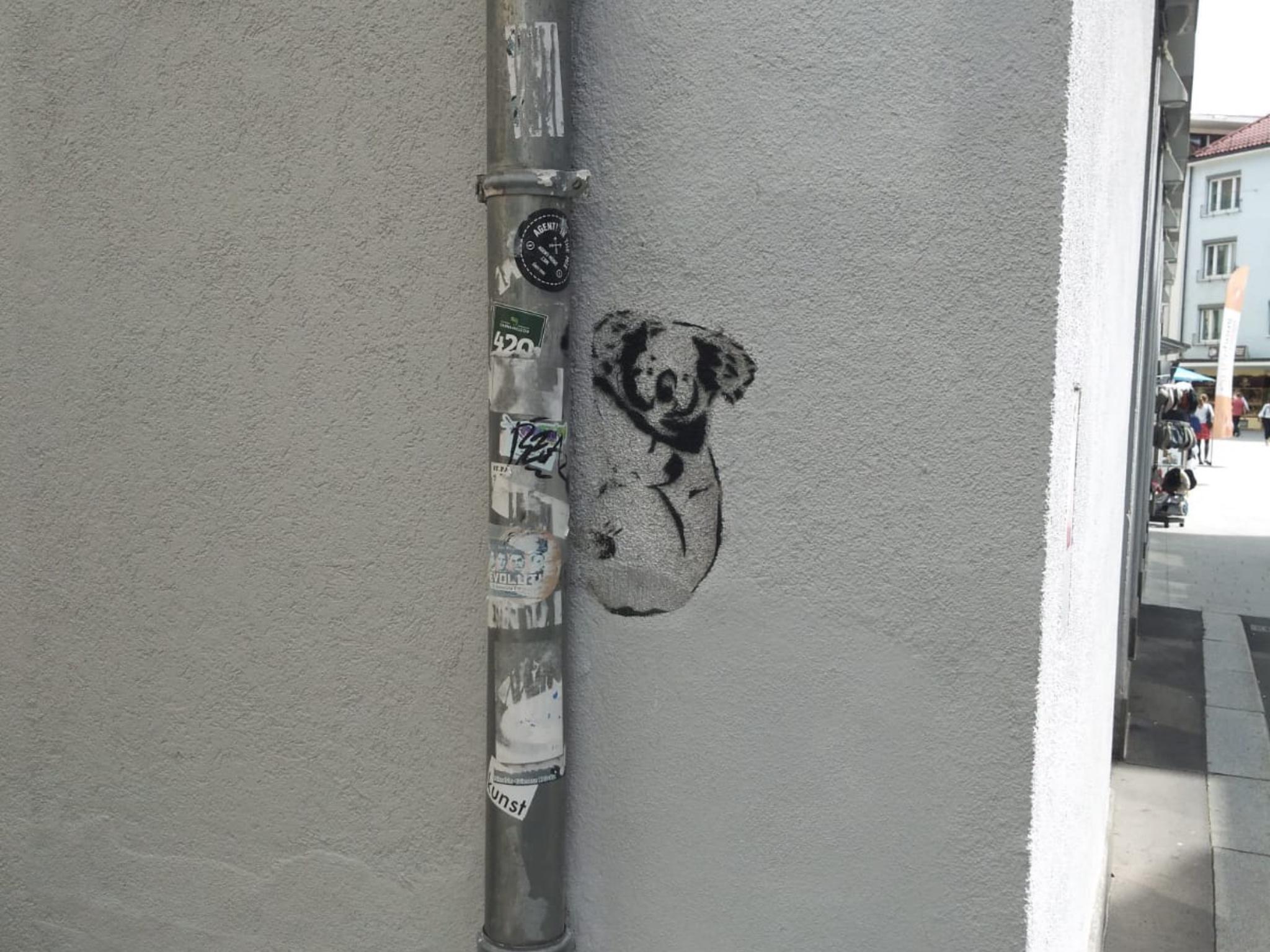 Auch kreativ: ein kleiner Koala hängt an der Regenrinne. Foto: Jessica Hänse