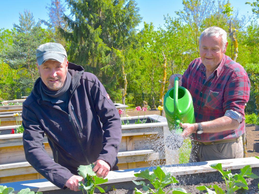 Roland Nikeleit (rechts) kam auf die Idee, Hochbeete anzulegen. Sein Chef Armin Kirchner hat das Vorhaben unterstützt. Foto: Brauchbar