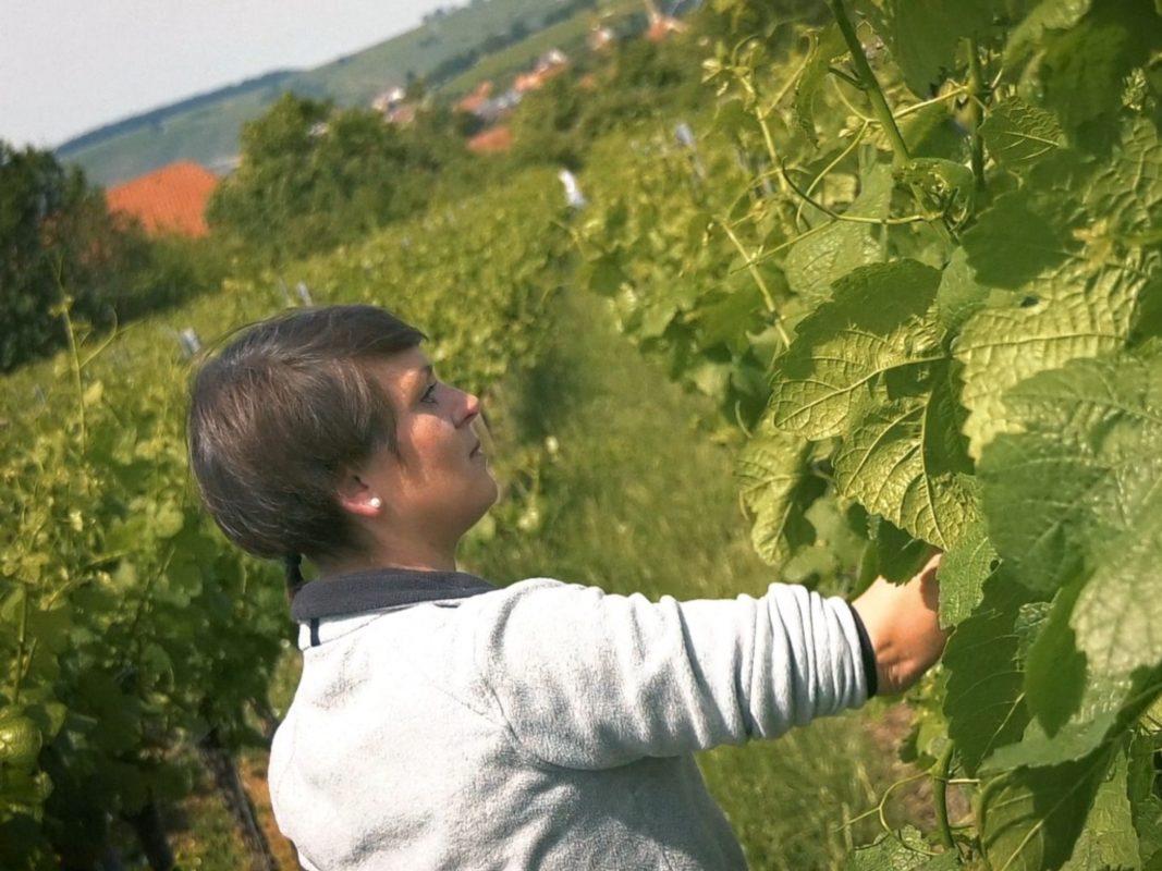 Manuela Martin vom Weingut Römmert. Foto: Dominik Ziegler