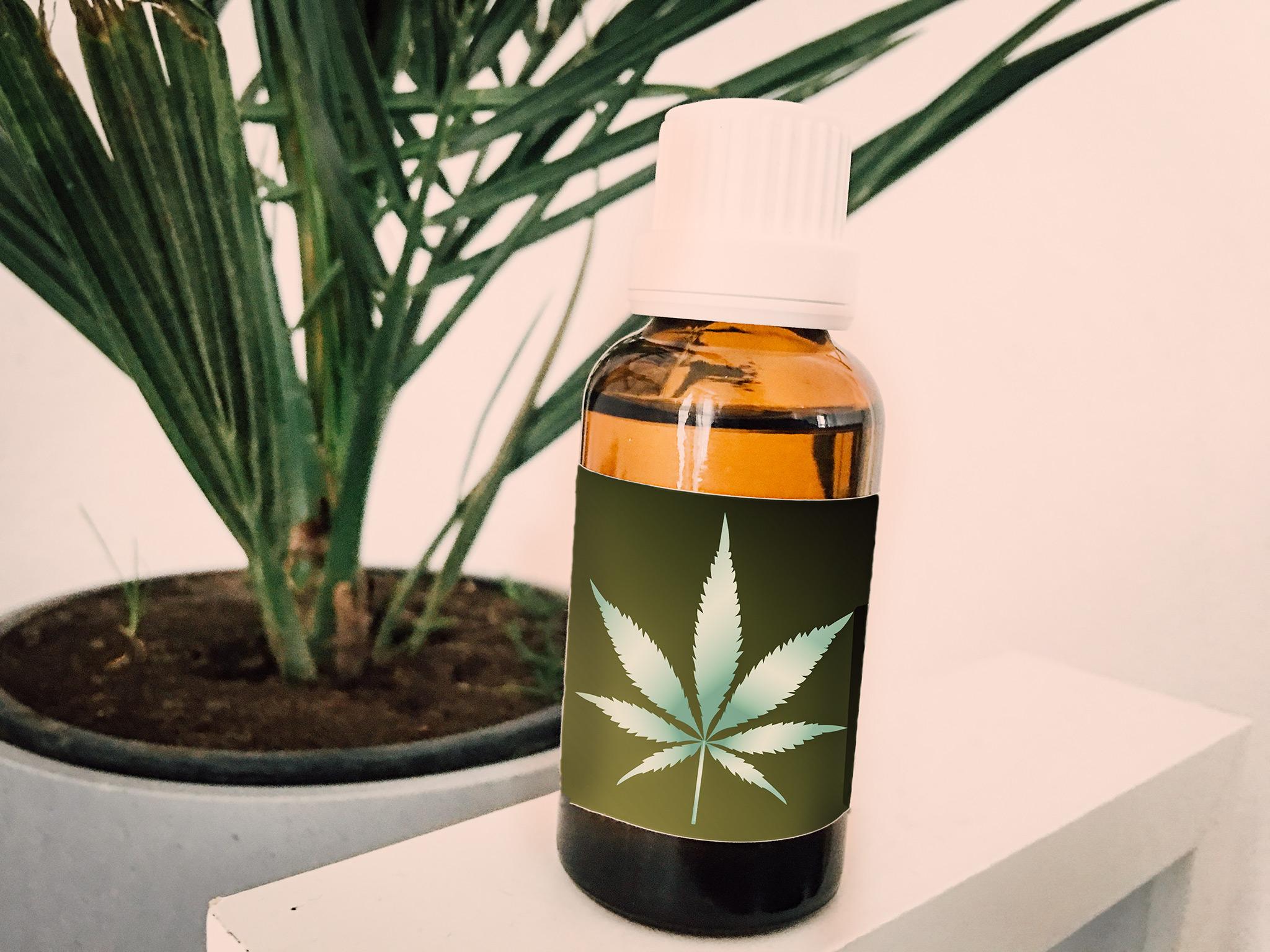 Cannabis: Was kann die Hanfpflanze wirklich?