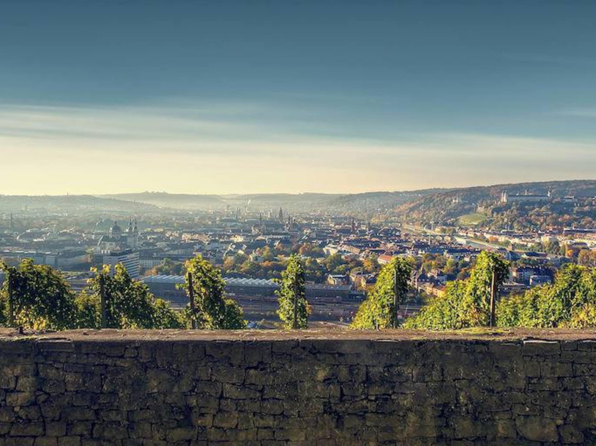 Blick auf Würzburg. Foto: Max Ziegler