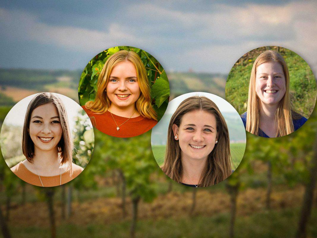 Von links: Lena Müller, Katharina Schmidt, Vanessa Wischer und Kimberly Langlotz. Fotos: Frankenwein-Frankenland GmbH