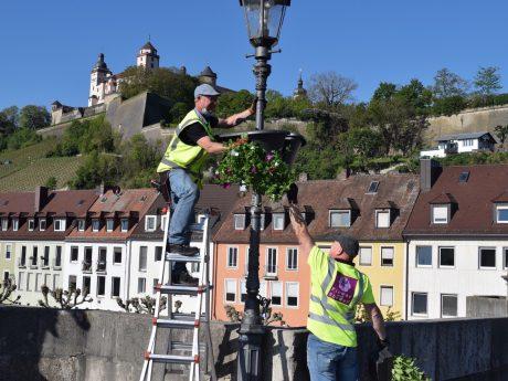 In der Stadt wurden wieder Blumenampeln aufgehängt. Foto: Würzburg macht Spaß e.V.