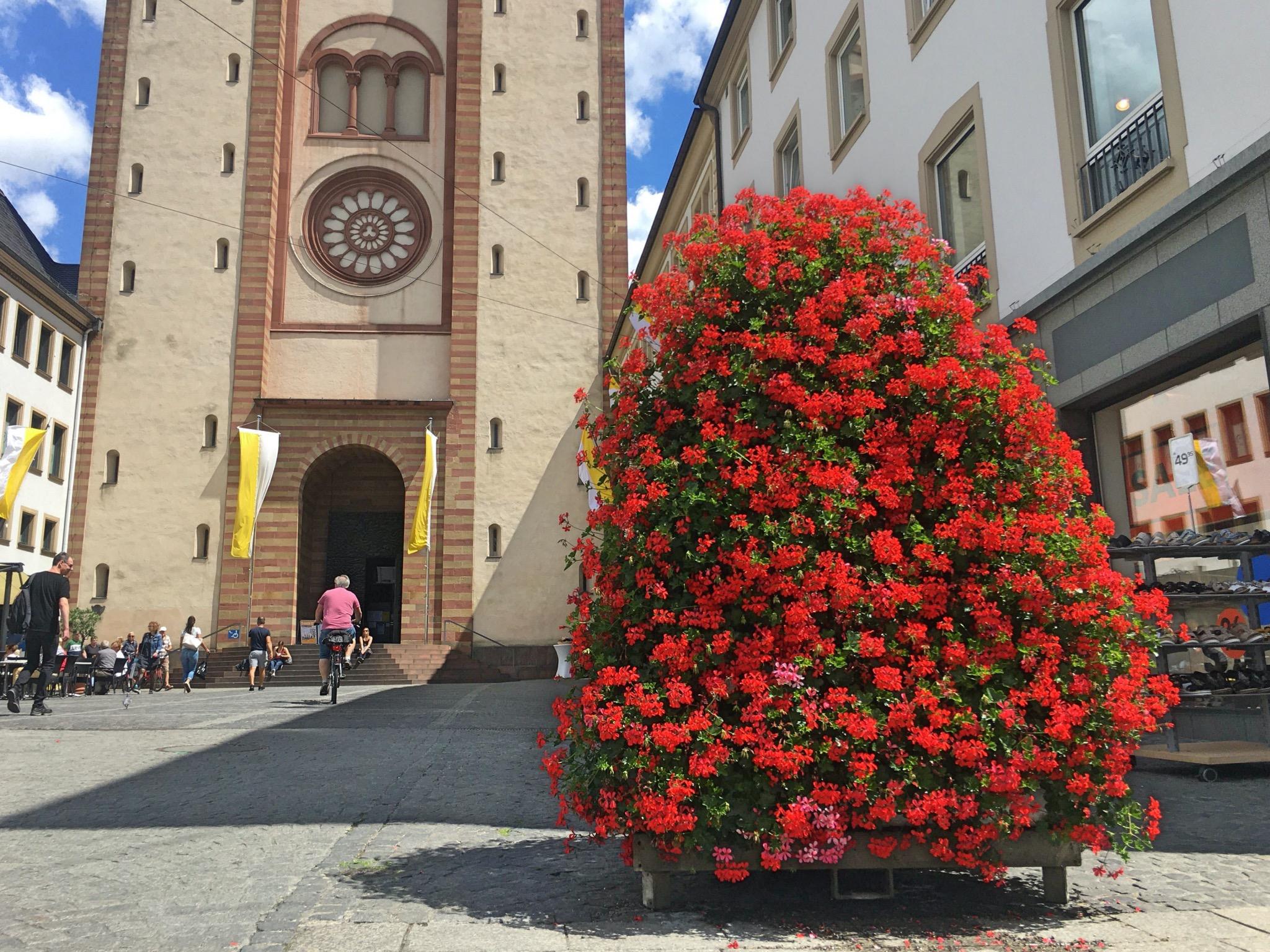 Blumenpyramiden wie diese vor dem Dom stehen in der gesamten Stadt verteilt. Foto: Lilli Müller