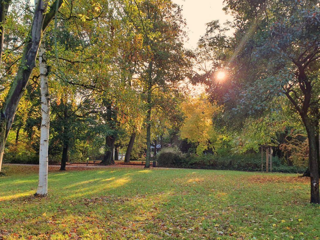 Ringpark im Herbst. Foto: Jessica Hänse