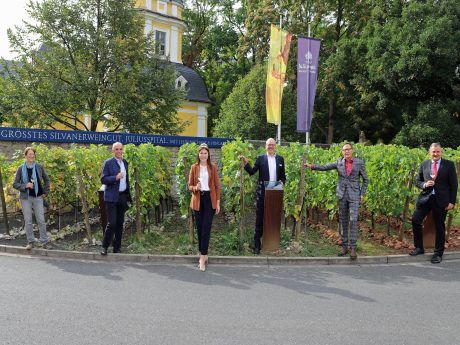Beate Leopold (Weinbauring Franken), Artur Steinmann (Präsident Fränkischer Weinbauverband), 64. Fränkische Weinkönigin Carolin Meyer, Horst Kolesch (Weingut Juliusspital), Hermann Mengler (Bezirk Unterfranken), Dr. Matthias Mend (Bayerische Landesanstalt für Weinbau und Gartenbau) (v. l. n. r.) präsentierten die Bilanz zur Weinlese 2020 im Weingut Juliusspital. Foto: Rudi Merkl.