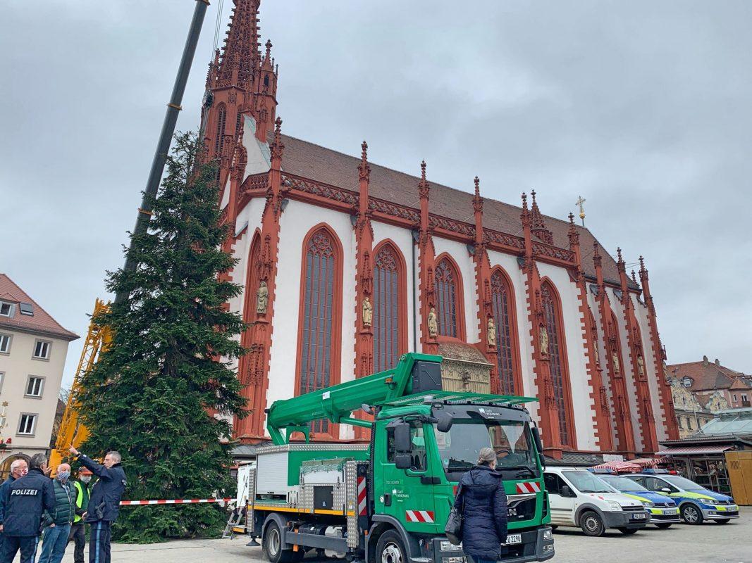 Der 17m hohe Weihnachtsbaum am Unteren Markt stammt dieses Mal aus Veitshöchheim. Foto: Lilli Müller
