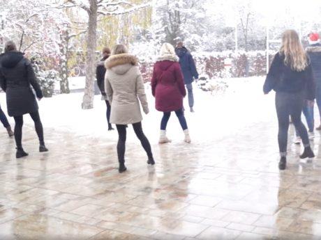 Nach einer Tanzvideo-Challenge geht es im Nachhinein um Musikrechte. Nicht alle hatten sie, wie die Senioreneinrichtungen im Landkreis Würzburg, zuvor erworben. Foto: Screenshot Facebook (Senioreneinrichtung des Landkreises Würzburg)