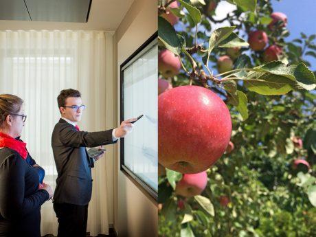 Heute an Morgen denken und nachhaltig in Nachhaltigkeit investieren! Fotos: Papay Landois GmbH