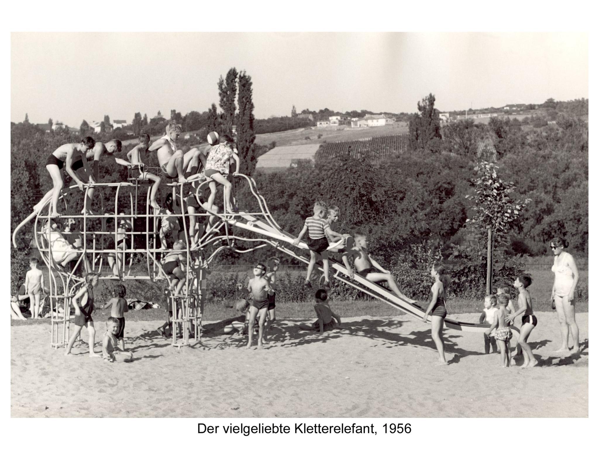 Der Kletterelefant im Dallenbergbad 1956. Foto: Historisches Archiv der WVV.