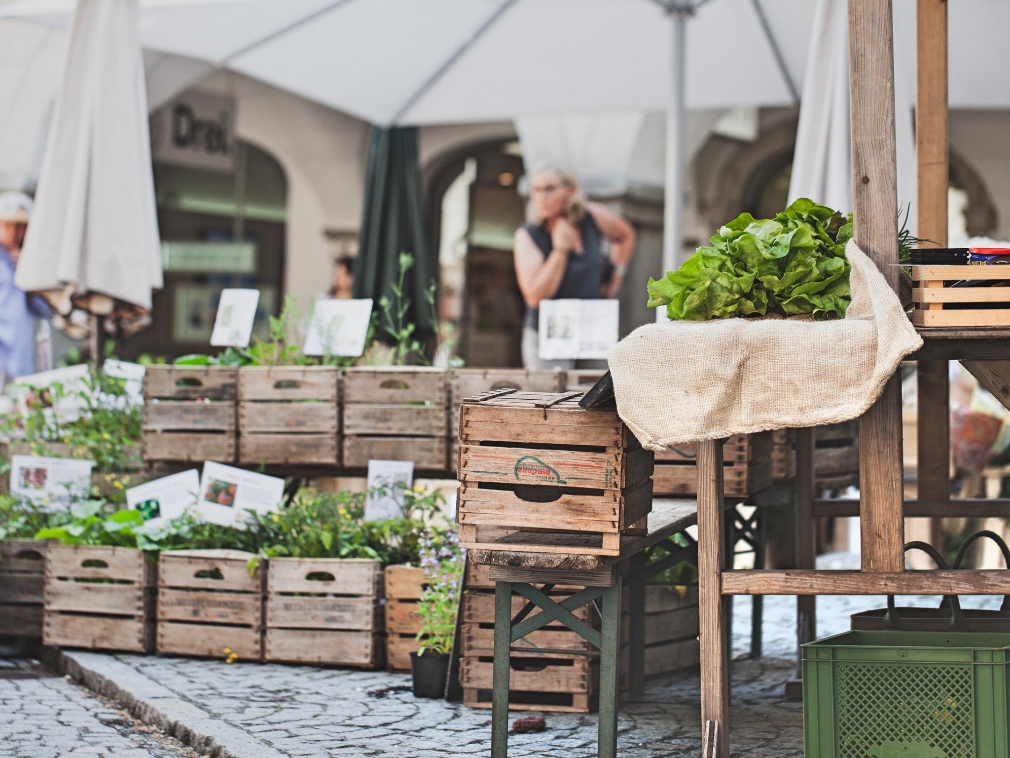 Der Wochenmarkt in Feldkirch. Foto: Magdalena Tuertscher - Stadtkultur und Kommunikation Feldkirch GmbH