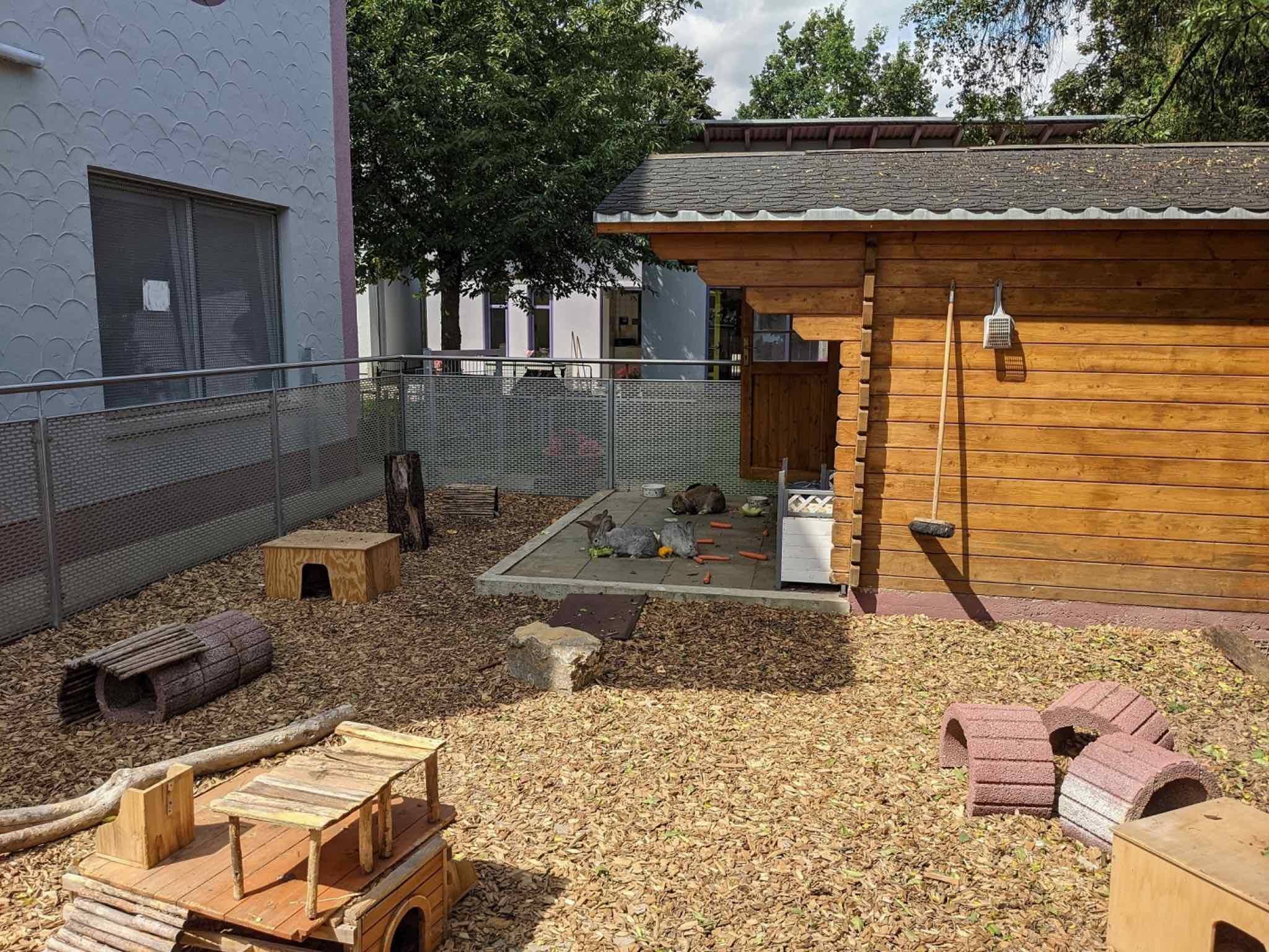 Das Tierheim ist aktuell zu 80 % ausgelastet. Foto: Christian Schuster